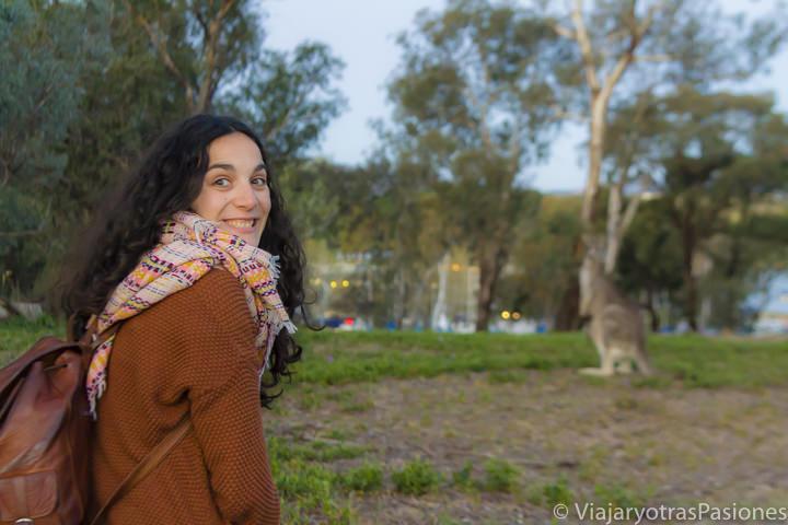 Maravilla y alegría frente a canguros an la visita a Canberra en Australia