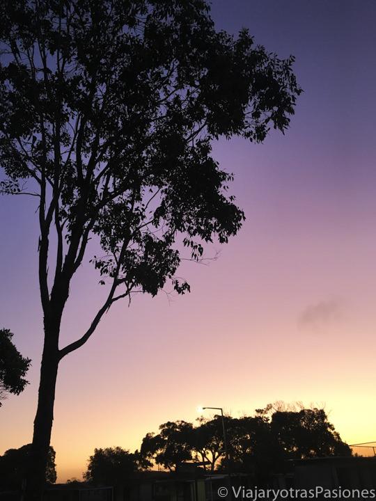 Increíble atardecer en Fingal Bay, Australia