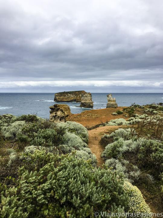 Vista y vegetación en la Bay of Island, en recorrer la Great Ocean Road en Australia