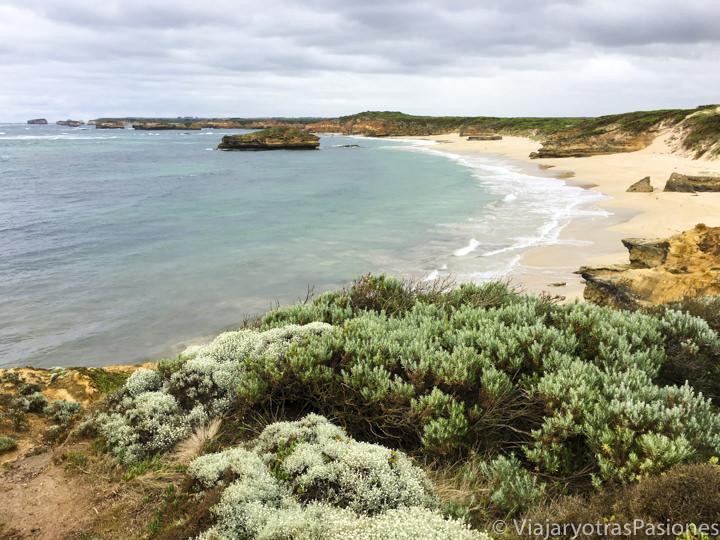 Hermosa playa en la Bay of Martyrs en la Great Ocean Road en Australia