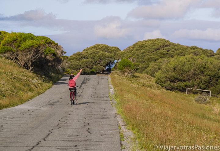 Bici y calle en la isla para visitar Rottnest Island cerca de Perth y Freemantle