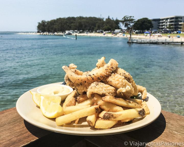 Espectacular plato de calamari en Australia