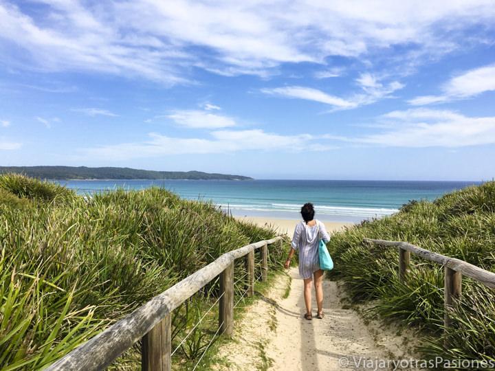 Camino para ir a Cave Beach, en Jervis Bay, Australia