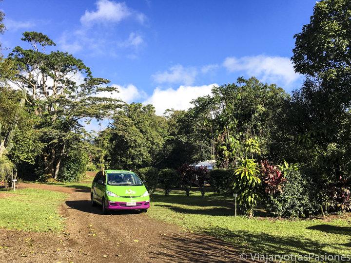 Campervan Jucy en la naturaleza de un camping en Australia