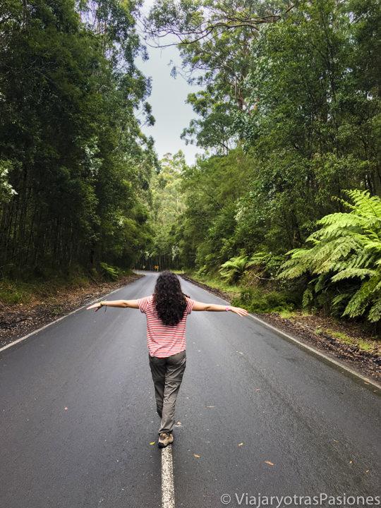 Disfrutando la belleza de la Great Ocean Road cerca de Cape Otway, en Australia