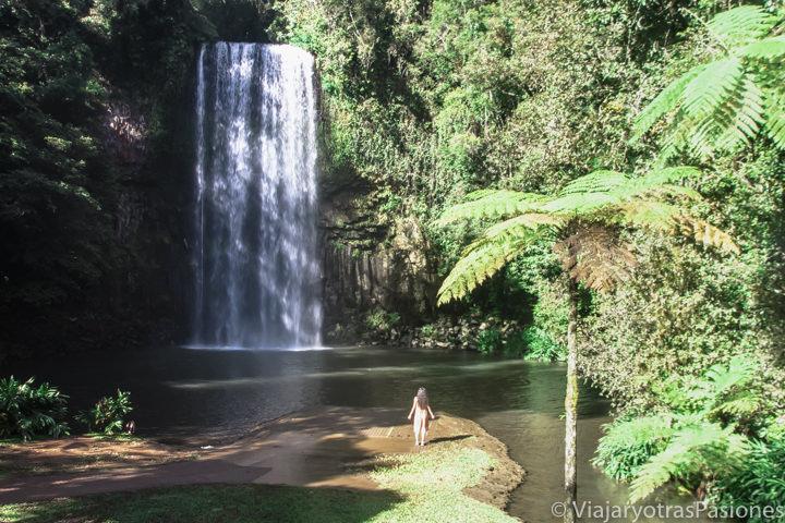 Espectacular cascada cerca de Cairns en el Norte de Australia