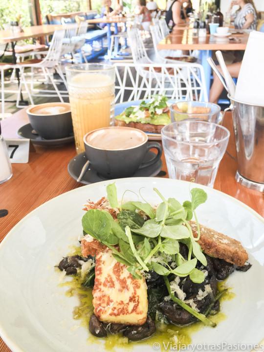 Delicioso brunch en The Little Nel en Nelson Bay, Australia