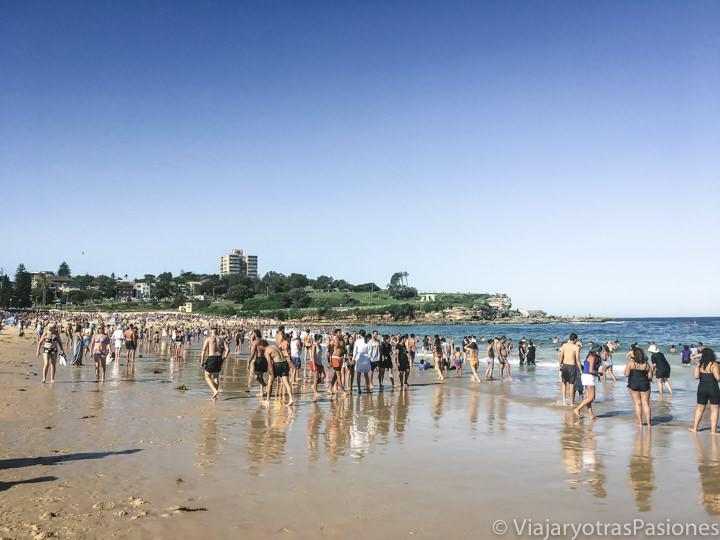 Haciendo el baño en el océano para Navidad en Coogee, Australia