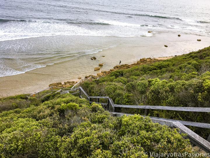 Escaleras para ir a la famosa playa de Bells Beach cerca de Torquay en la Great Ocean Road en Australia