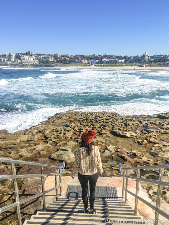 Espectacular vista desde las escaleras en North Bondi Beach, Sydney