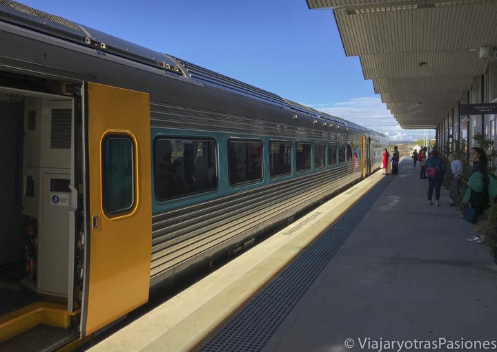 Tren Xplorer para viajar entre Sydney y Canberra en Australia