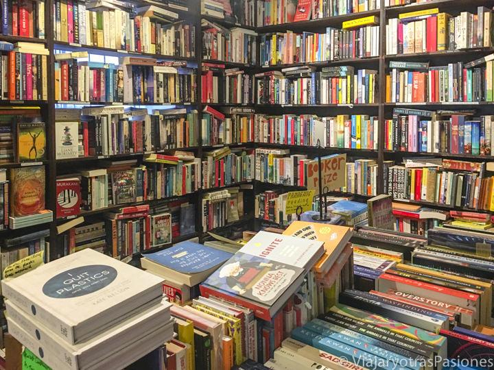 Interior de la bonita librería Gertrude & Alice en Bondi Beach, Sydney