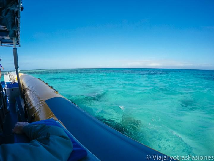 Barco para hacer el snorkel en la Gran Barrea de Coral en Australia