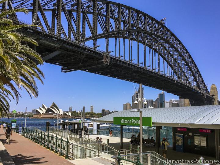 Espectacular parada del ferry de Milsons Point en el Sydney Harbour, Australia