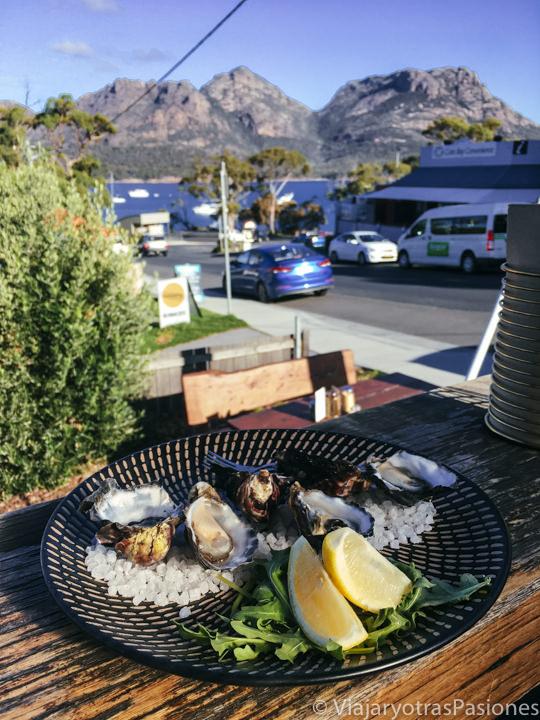 Espectacular porción de ostras en Coles Bay, Tasmania