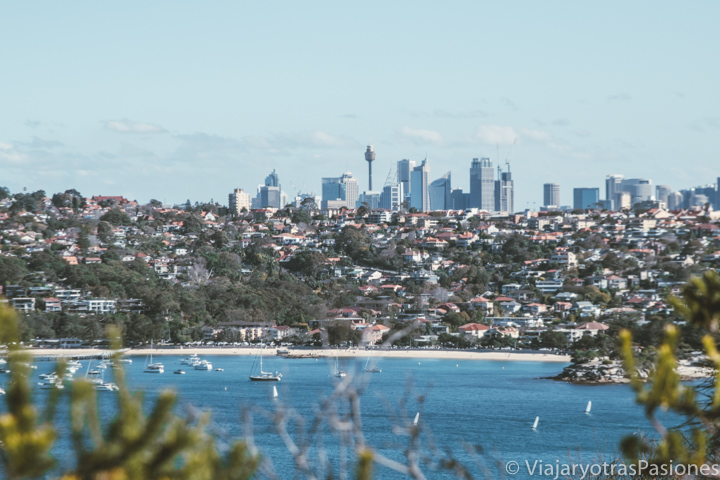 Espectacular panorama de Sydney desde el Spit to Manly Walk, Australia