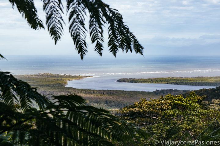 Panorama del estuario del Daintree River en Queensland, Australia