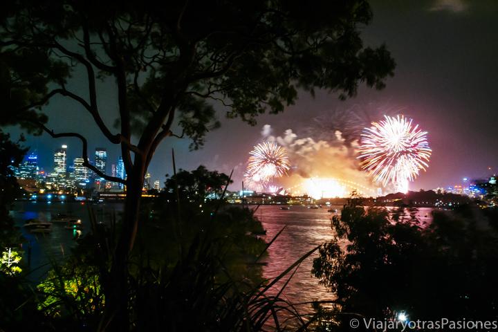 Panorama de los famosos fuegos artificiales del Año Nuevo en Sydney, Australia