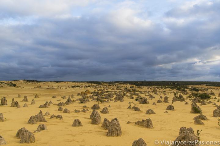 Increíble panorama de el Pinnacles Desert en Western Australia
