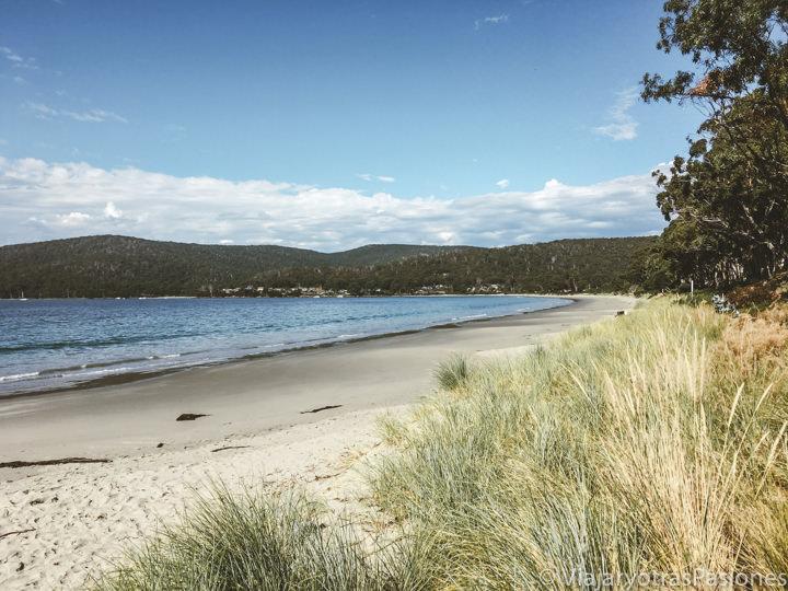 Hermosa playa de Adventure Bay en Bruny Island, Tasmania