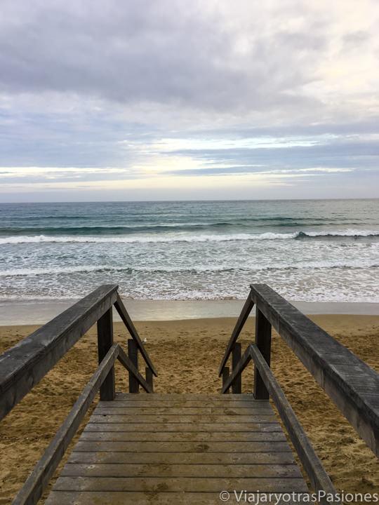 Atardecer en la bonita playa de Apollo Bay que se puede ver en recorrer la Great Ocean Road en Australia