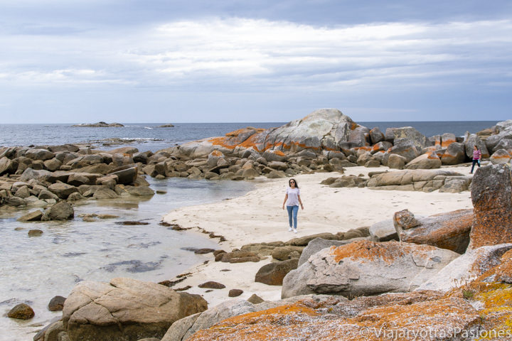 Explorando la bonita Bay of Fires en la costa este de Tasmania, Australia