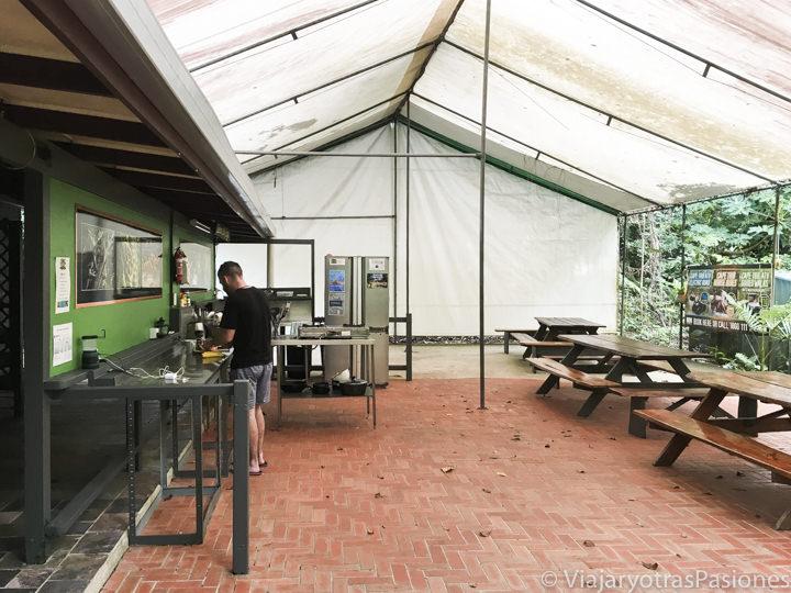 Cocina del Safari Lodge en Cape Tribulation, Australia