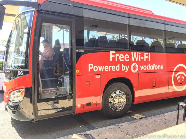 Sky bus en el aeropuerto de Gold Coast para ir a Byron Bay, Australia