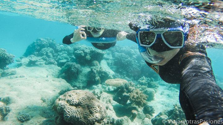 Pareja haciendo snorkel en la increíble Gran Barrera de Coral, Australia