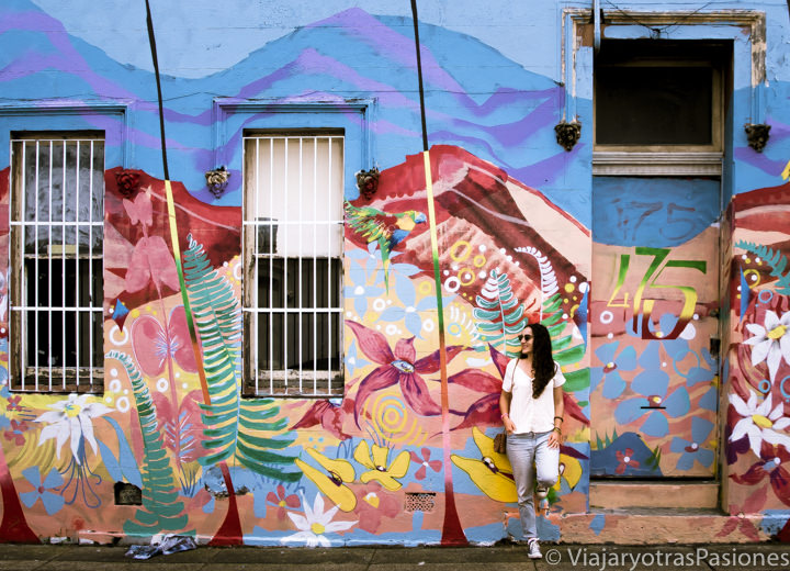Calle con street art en el bonito barrio de Newtown, Australia