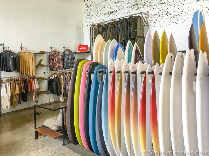 Interior de la célebre tienda de surf McTavish en Byron Bay, Australia