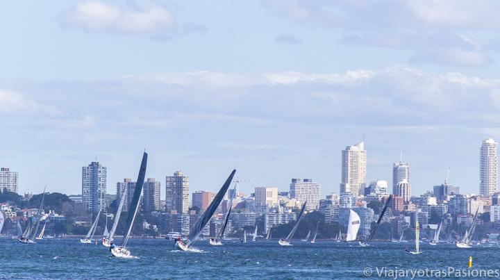 Barcos en el Sydney Harbour en Australia