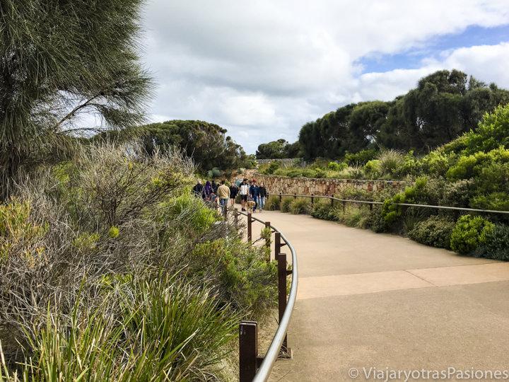 Camino para il desde el Tourist Centre hasta los miradores de los increíbles Doce Apóstoles en la Great Ocean Road en Australia