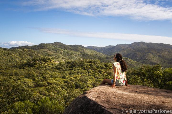 Increíble vista de la selva en Magnetic Island, Queensland, Australia