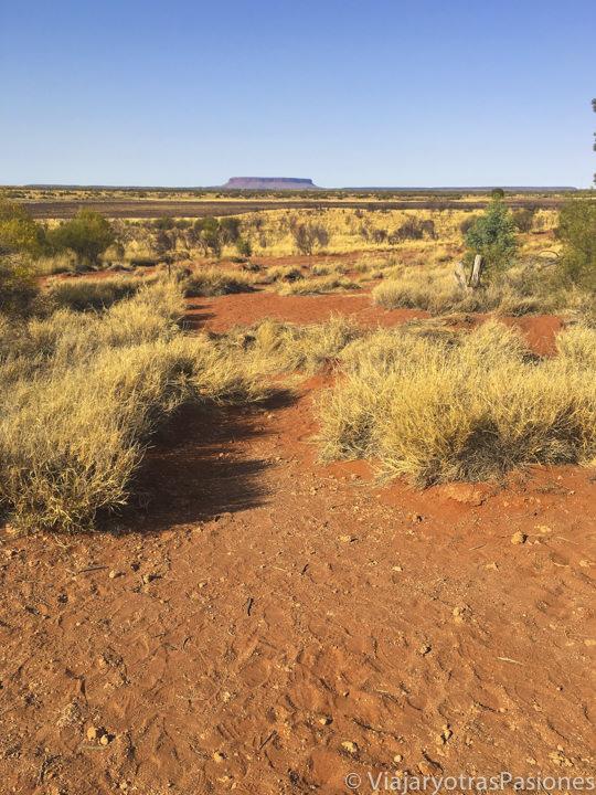 Vista del Outback australiano con el tipico paisaje delk Red Centre en Central Australia