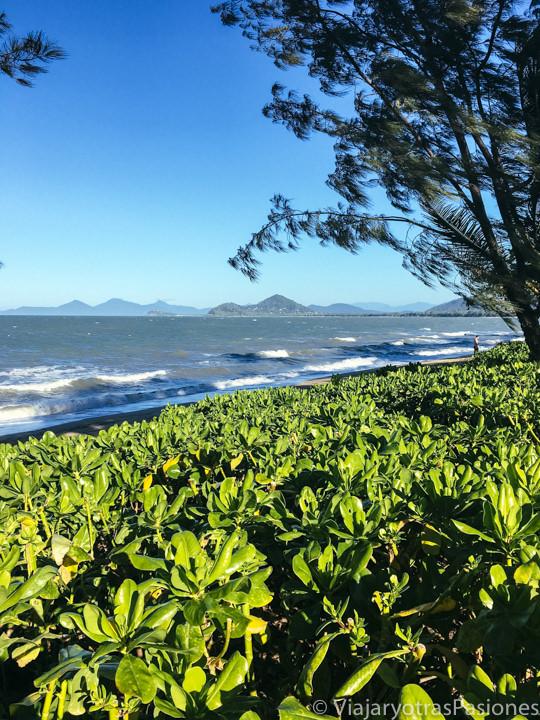Preciosa vista de la playa de Palm Cove cerca de Cairns, Australia